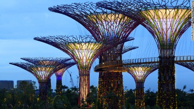 Singapore S Gardens By The Bay Transform It Into A City In A