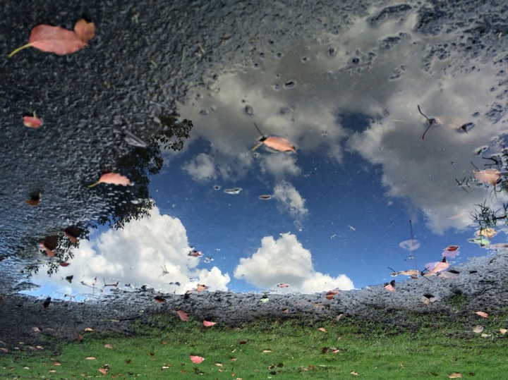 See Inverted Landscapes Captured in Perfectly Reflective Puddles