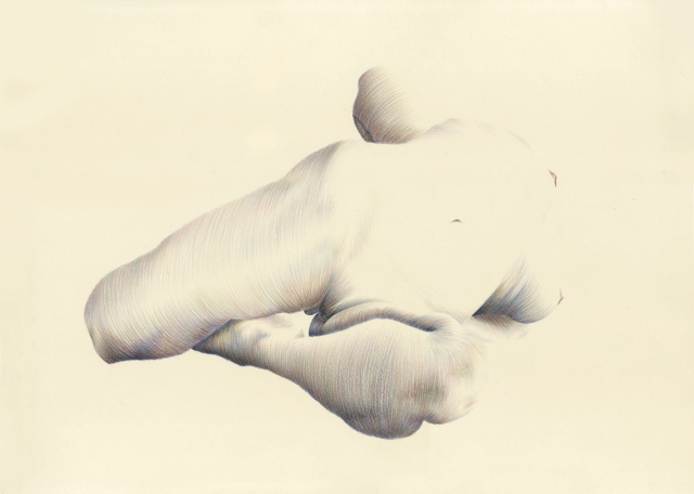 Contortionist pencil drawings show bodies at their most intimate creators
