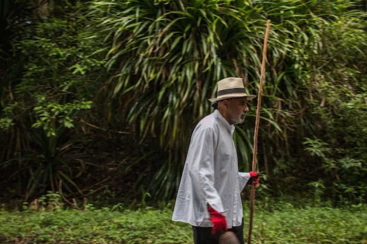 Artist Papo Colo Is Spending 400 Days of Solitude in the Puerto Rican Jungle