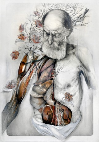 Plants Grow From Human Anatomy In Poetic Paintings Of Decaying
