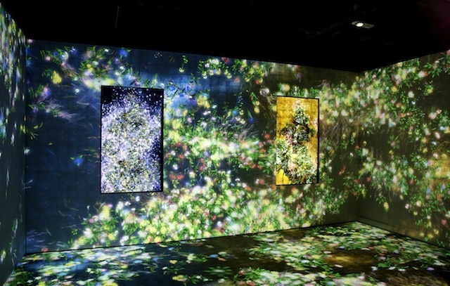 Computer-Generated Light Garden Blooms And Wilts With Human