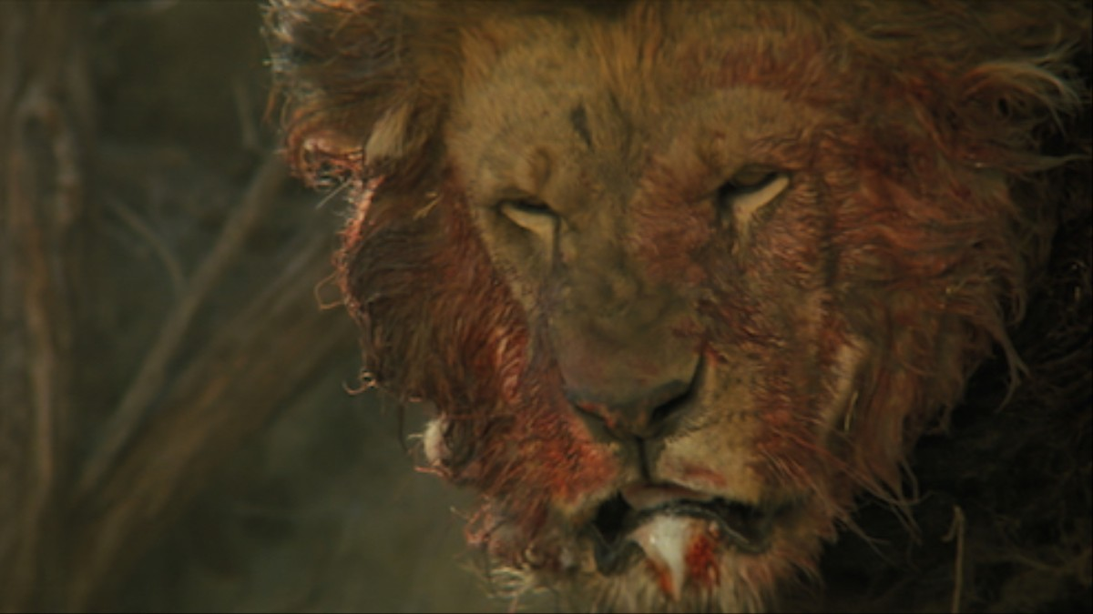 People Were Harmed In The Making Of This Film Creators - 1971 family lived real lion named neil