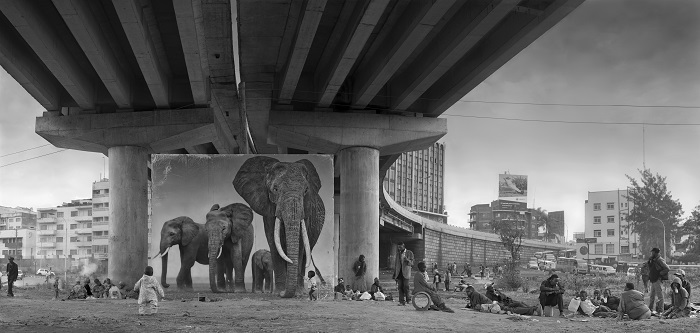 Underpass with Elephants (Lean Back, Your Life is on Track) 2015.jpg