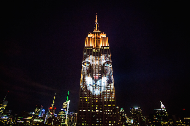 Empire State Building Art Projection