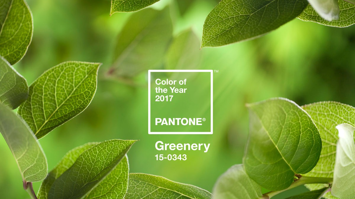 Well, Pantone\'s Color of the Year 2017 Is Optimistic - Creators