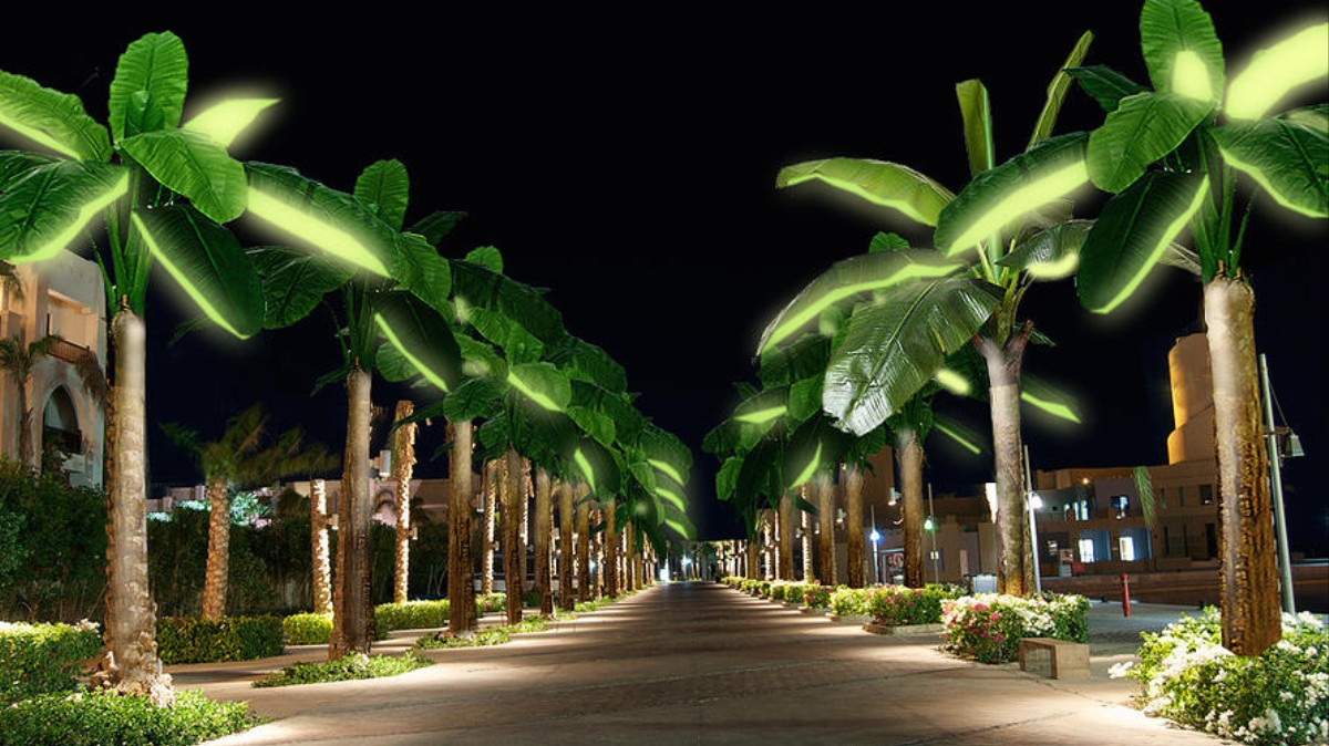 Eternal Sunshine Could Come From Solar Powered Palm Trees