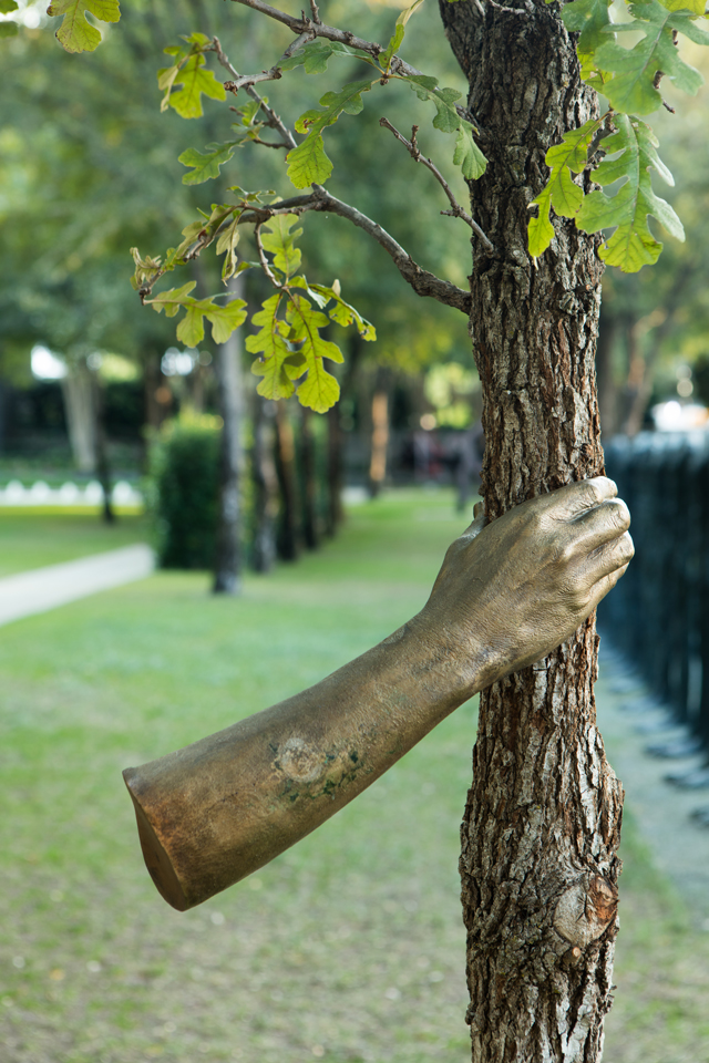 Bronze Arm Sculptures Squeeze Trees In A Chokehold Creators - This beautiful bronze sculpture has been attached to a tree since 1968