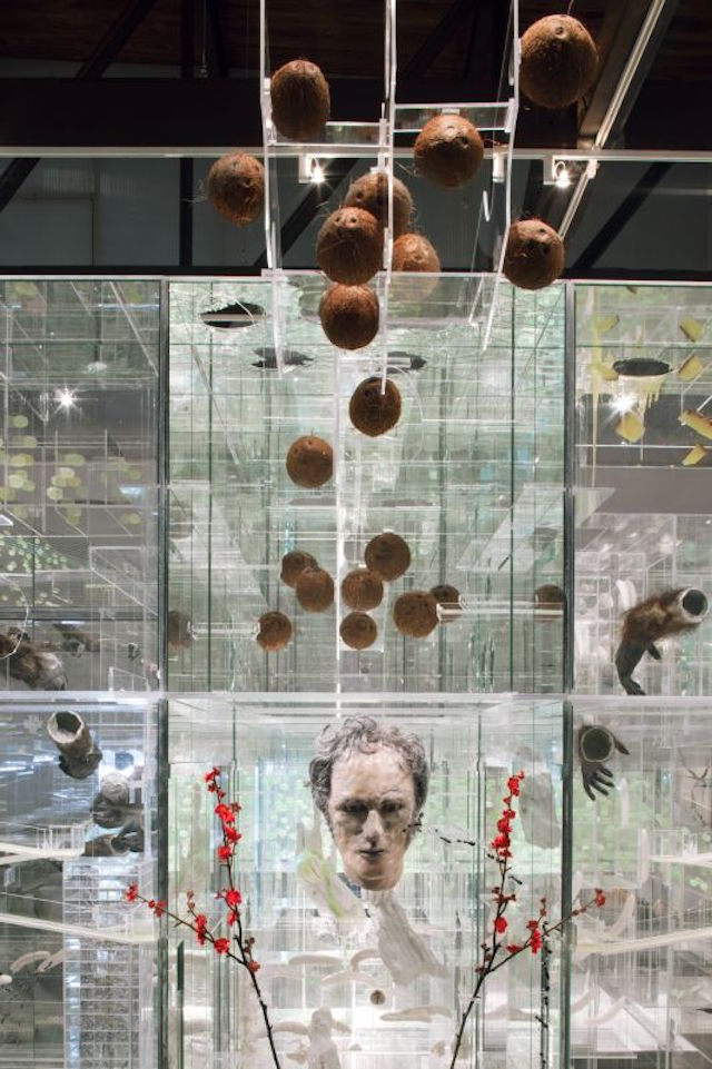 Surreal Taxidermy Gets Suspended in a Plexiglass Labyrinth